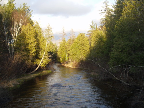 photo credit: Grand Traverse Conservation District