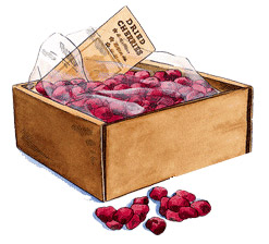 dried-cherries-5lb