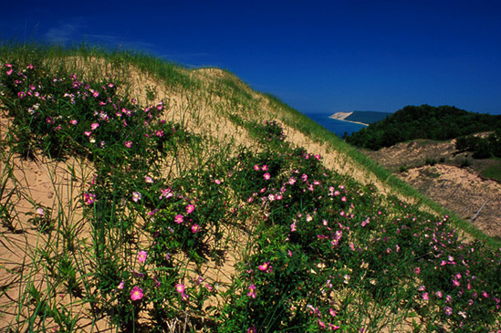 Sleeping-Bear-Dunes-by-Mark-S-Carlson